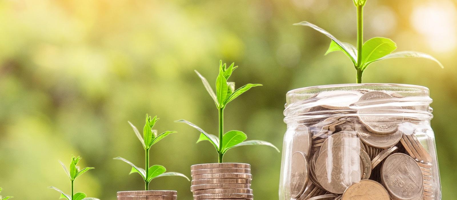 Fiyat & Maliyet - Piyasa Analizi